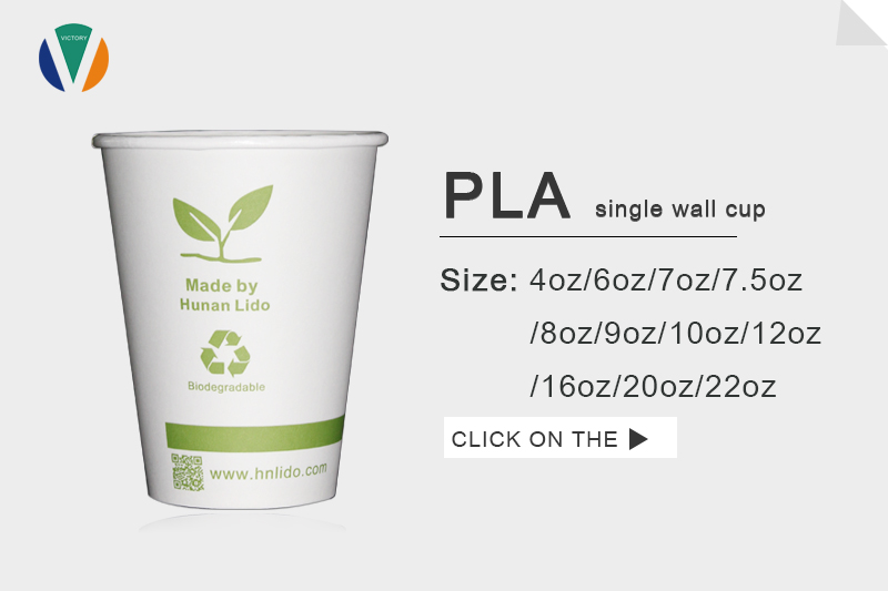 PLA single wall paper cup